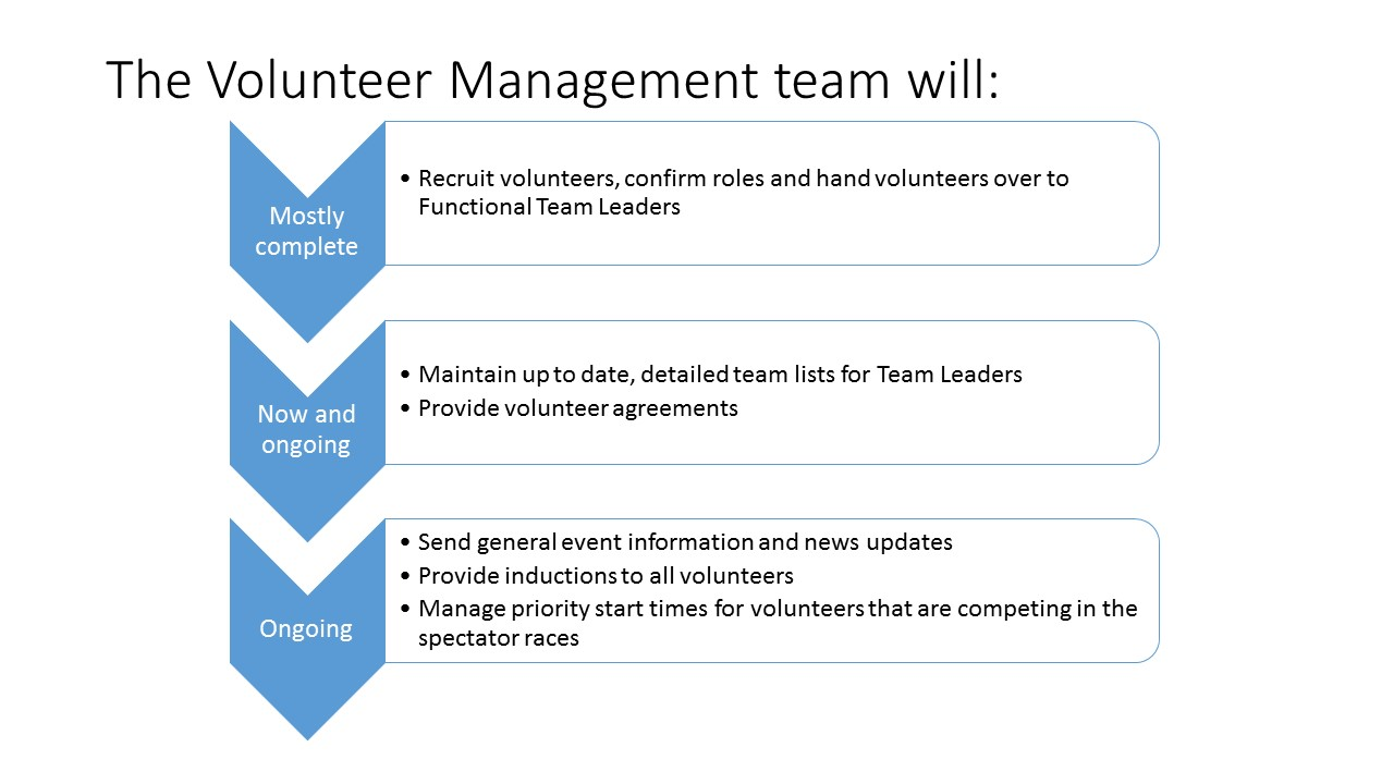 Functional team leaders responsibilities for volunteers